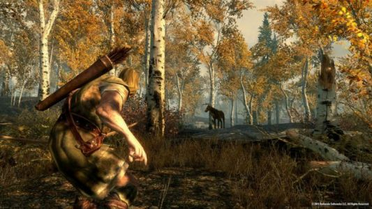 Skyrim on Nintendo Switch supports video capture feature