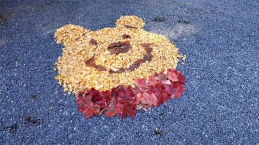 Japanese Leaf Art Gives All the Fall Feels on Twitter
