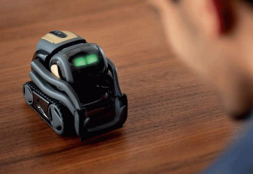 The Anki Vector 'helpful robot for your home' was just released