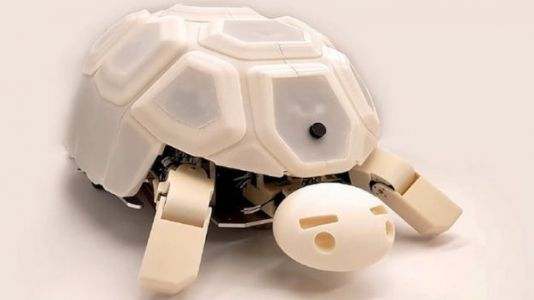 Robotic Turtle Teaches Kids to Keep Their Hands to Themselves