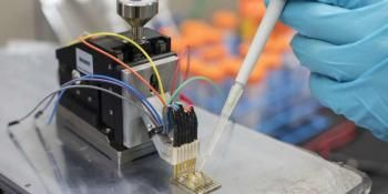 Low-Cost Plastic Sensors Could Monitor a Range of Health Conditions