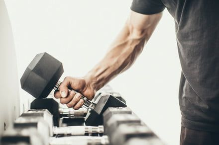 Astonishing artificial muscle can lift 12,600 times its own body weight