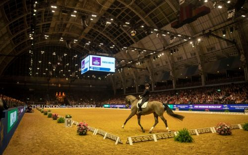 Fighter jet technology to help transportation of competition horses