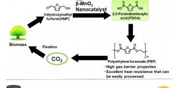 Green Catalysts with Earth-Abundant Metals Accelerate Production of Bio-Based Plastic