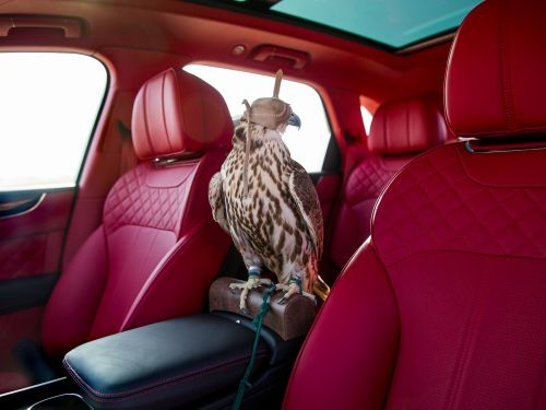 The 7 most extravagant car interiors in the world