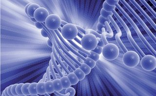 Microsoft successfully creates an end-to-end storage device using DNA