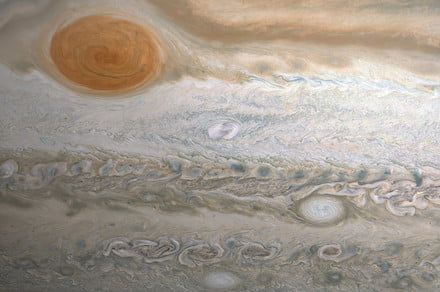 Amateur astronomer discovers a brand new spot on Jupiter