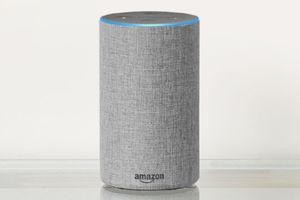 Echo users might not feel safe after reading about the information Amazon employees can access