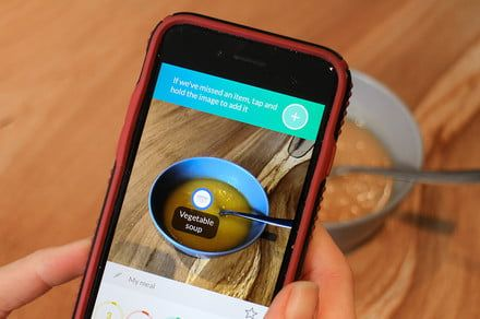 Photograph your meal with the Foodvisor app for caloric, nutritional estimates
