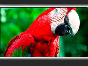 End Of The Line: The Samsung Galaxy J Series Might Be Getting The Chop