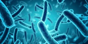 Researchers One Step Closer to Harnessing Electricity Produced by Bacteria