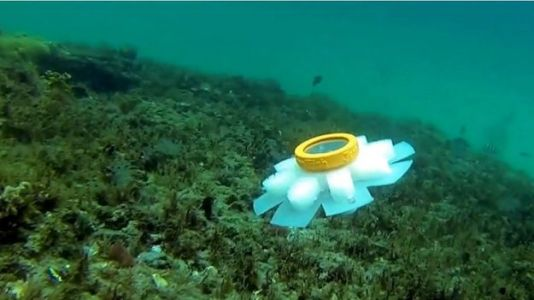 Jellyfish Robot to Monitor Delicate Ocean Creatures