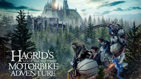 Universal Reveals New 'Harry Potter' Roller Coaster Opening in June