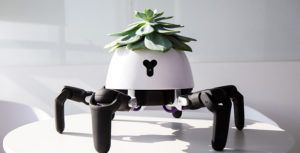 This robot plant-holder has legs so it can follow the sun