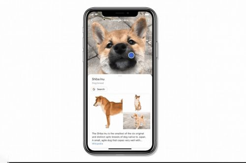 Google Lens can now be accessed directly from the search app on iOS