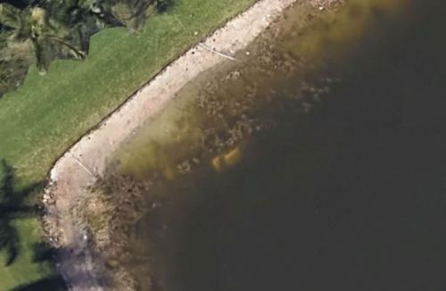 Florida man missing since 1997 found at the bottom of a pond thanks to Google Maps