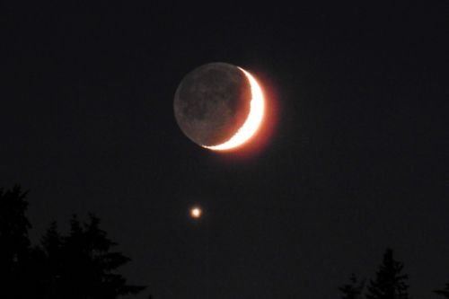 Venus photobombed the Moon last night, and everyone loved it