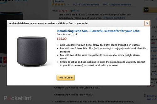 Amazon Echo Sub and Smart Plug leak out