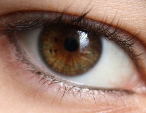 Scientists spot brain-destroying proteins in the eyes of infected patients
