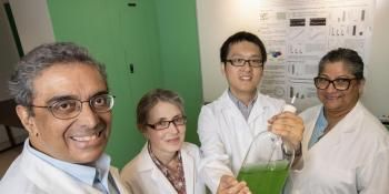 Researchers Engineer Bacteria to Create Fertilizer Out of Thin Air