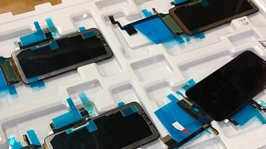 This could be our first look at the iPhone X Plus display