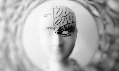 Reducing brain aging may be as simple as light physical activity