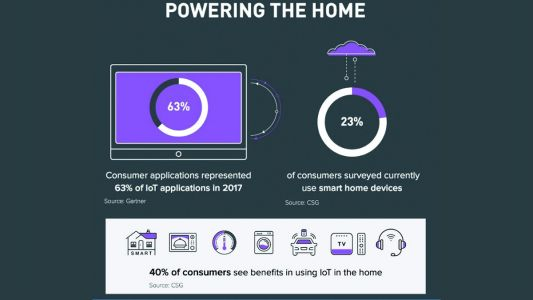 Wearables Lead Consumer IoT Charge