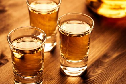 Shotsgiving: An entire Thanksgiving meal in shots