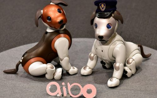 The robot AI dog that will keep an eye on children and the elderly