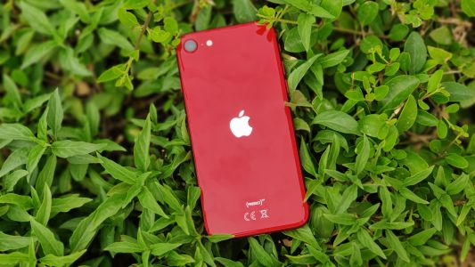 IPhone SE 3 could launch in early 2022