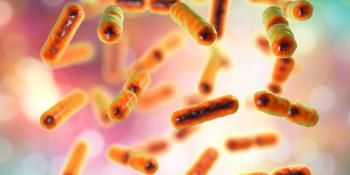 A Single Genetic Change in Gut Bacteria Alters Host Metabolism