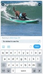 Twitter Adds Ability to Send Replies While Watching Videos