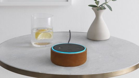 Echo devices can now make calls and send messages on Alexa's own network in India