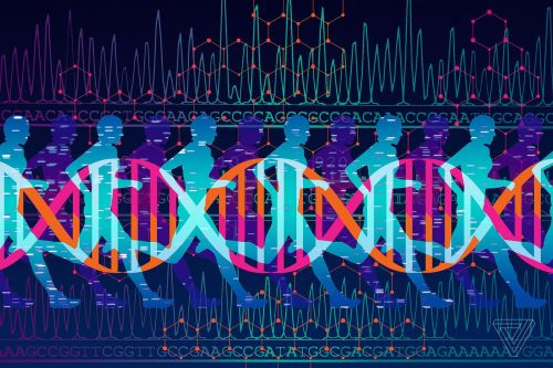 I paid $300 for DNA-based fitness advice and all I got was junk science