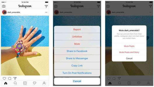 Instagram will let you mute accounts that you follow