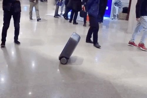 This smart suitcase uses Segway technology to balance itself as it follows you around