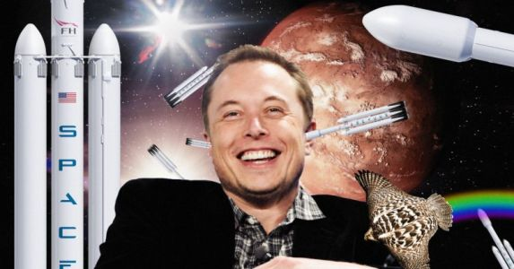 I welcome the douchebag that replaces Elon Musk in the never-ending tech hype cycle