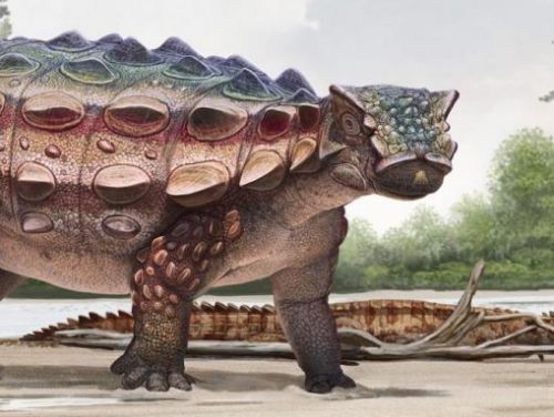 Flashy and fiercely armored, new dinosaur shakes up old theories