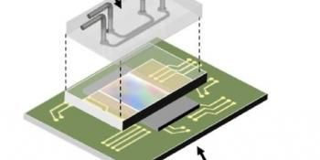 Fluorescence Microscopy On a Chip - No Lenses Required