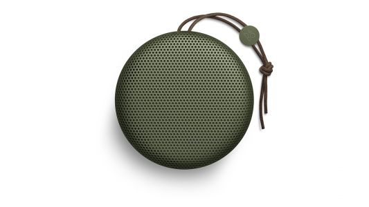 Should I buy the Bang & Olufsen Beoplay A1 Bluetooth Speaker?