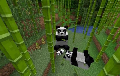 Minecraft 1.8 update brings pandas, stray cats, bamboo, and more