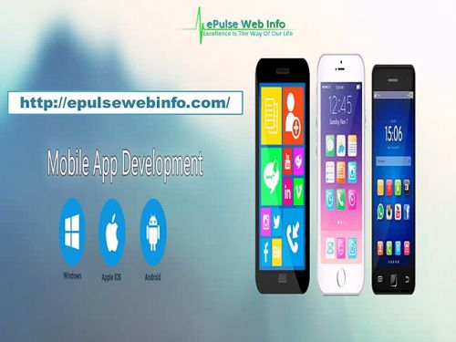 Information technology companies in India- Epulsewebinfo.com- IT Company in Amritsar- Best Seo Service Providers