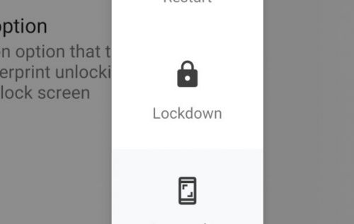 The best hidden Android Pie feature is LOCKDOWN