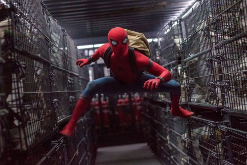 Disney doesn't have plans to bring live-action Spider-Man movies to Disney+
