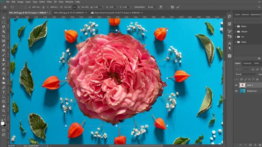 Photoshop 2020 review