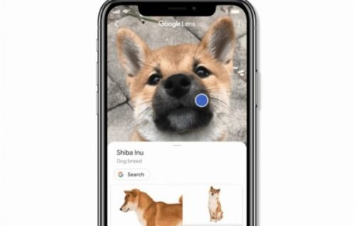 Google Lens in iOS Search app makes it easier to see