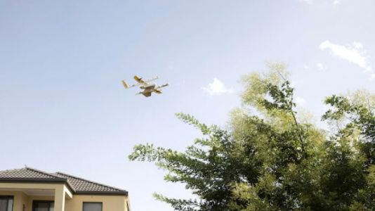FAA Greenlights Google Wing Drone Deliveries in US
