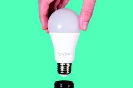 Wyze's next ultra-affordable smart device is an $8 light bulb