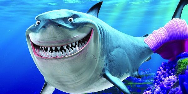 Newly Discovered Prehistoric Shark Named For An Arcade Classic