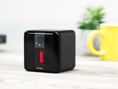 The PetCube Play 1080p camera is on sale for $130 in two colors